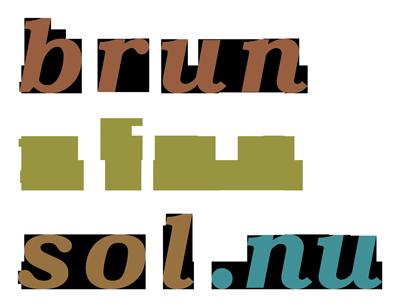 BrunUtanSol.nu